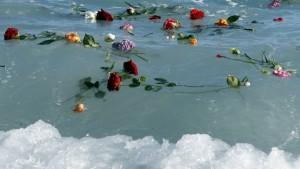 migrants-flowers